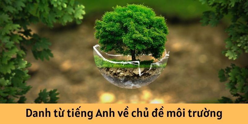 Danh từ tiếng Anh về chủ đề môi trường