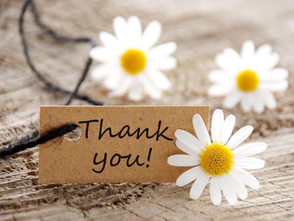 Lời cảm ơn về món quà bằng tiếng Anh của bạn bè