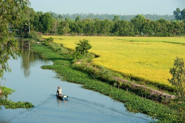 Full Bài mẫu viết về cuộc sống ở nông thôn bằng tiếng Anh