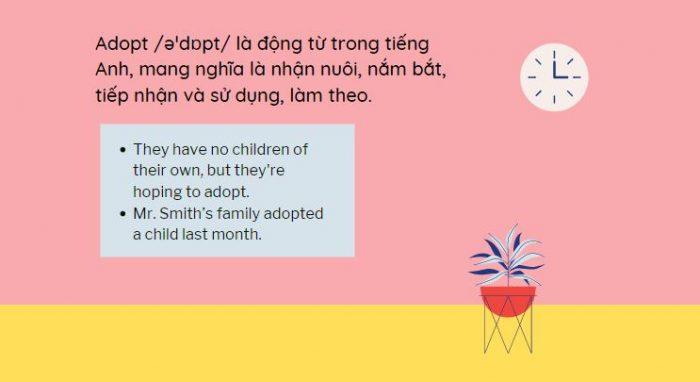 Cách sử dụng Adopt trong tiếng Anh