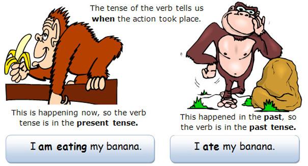 Cấu trúc và cách dùng while trong tiếng Anh