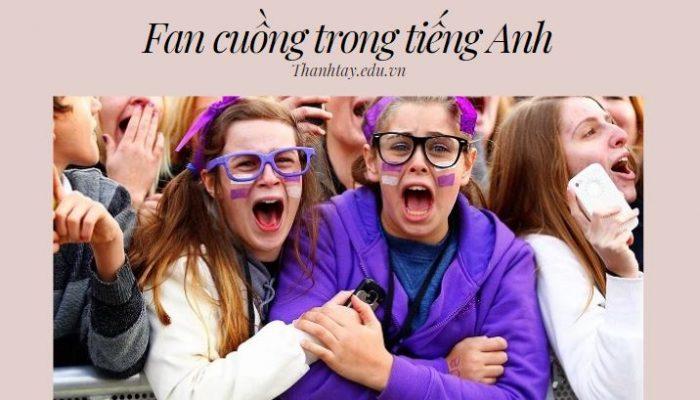 Fan cuồng trong tiếng Anh - Từ vựng liên quan đến hâm mộ