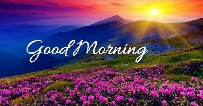 Mẫu câu chào buổi sáng bằng tiếng Anh thường dùng