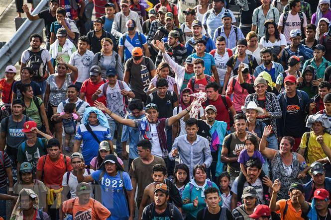 Từ vựng lập luận phản đối sự nhập cư