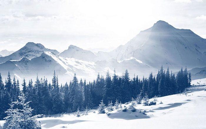 Từ vựng về các kiểu tuyết
